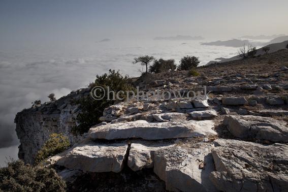Wadi Bani Kharous, Outward Bound Oman. © 2012 Helen Couchman